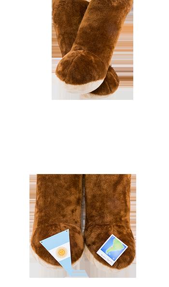 vanesa-salcedo